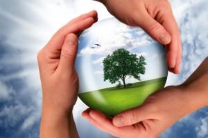 Captación de recursos financieros para el tercer sector
