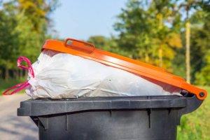 Gestión de Residuos y Embalajes