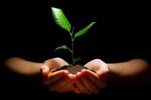 Introducción a la Sostenibilidad