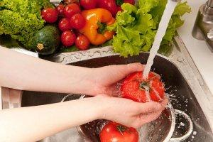Introducción a la Manipulación de Alimentos