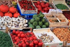 Introducción a la soberanía alimentaria y a la agroecología