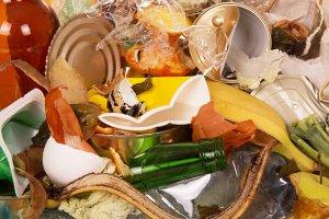 Impacto Medioambiental en Productos Alimentarios